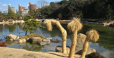 Парк-сад музея