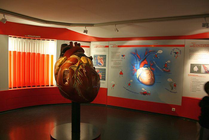 """Музей """"Дом природы"""" в Зальцбурге"""