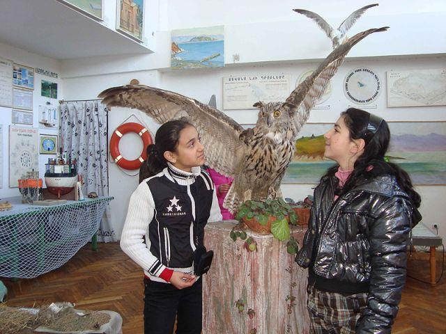 Государственный музей природы Узбекистана