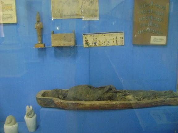 Коллекция египетских древностей музея