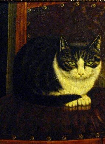 Кошачий Рафаэль