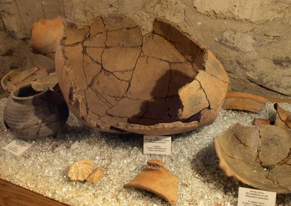 Коллекция музея древней и античной истории