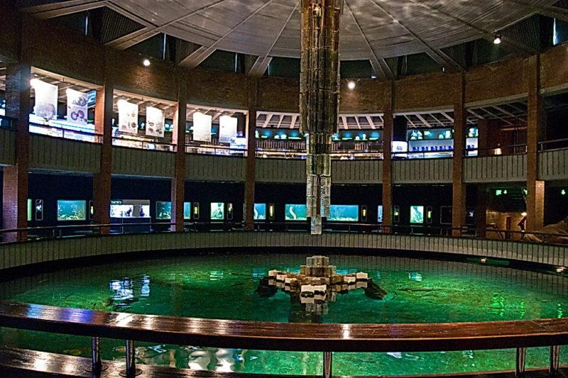 Аквариум Литовского морского музея