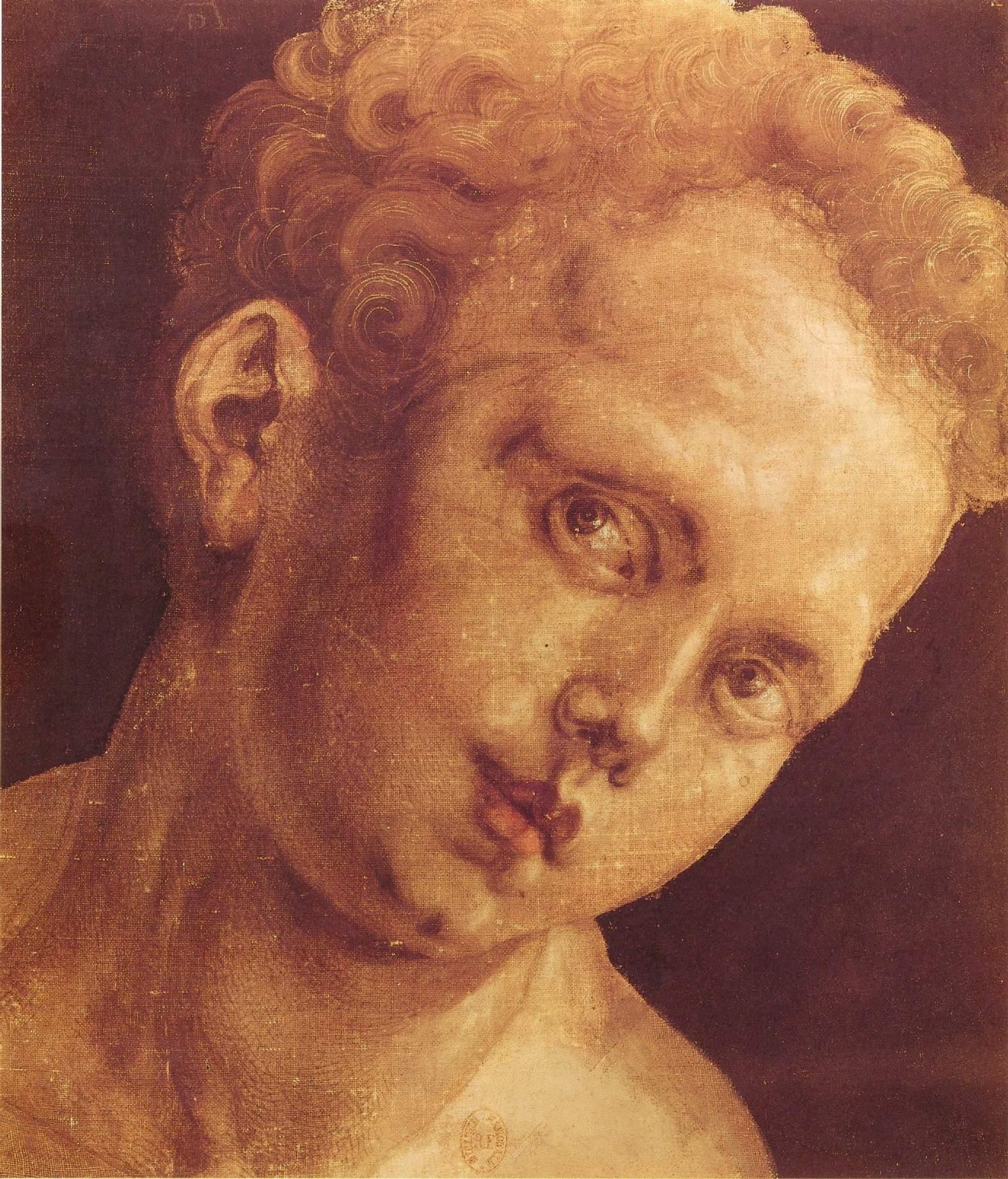Детская голова, наклоненная вправо, Альбрехт Дюрер