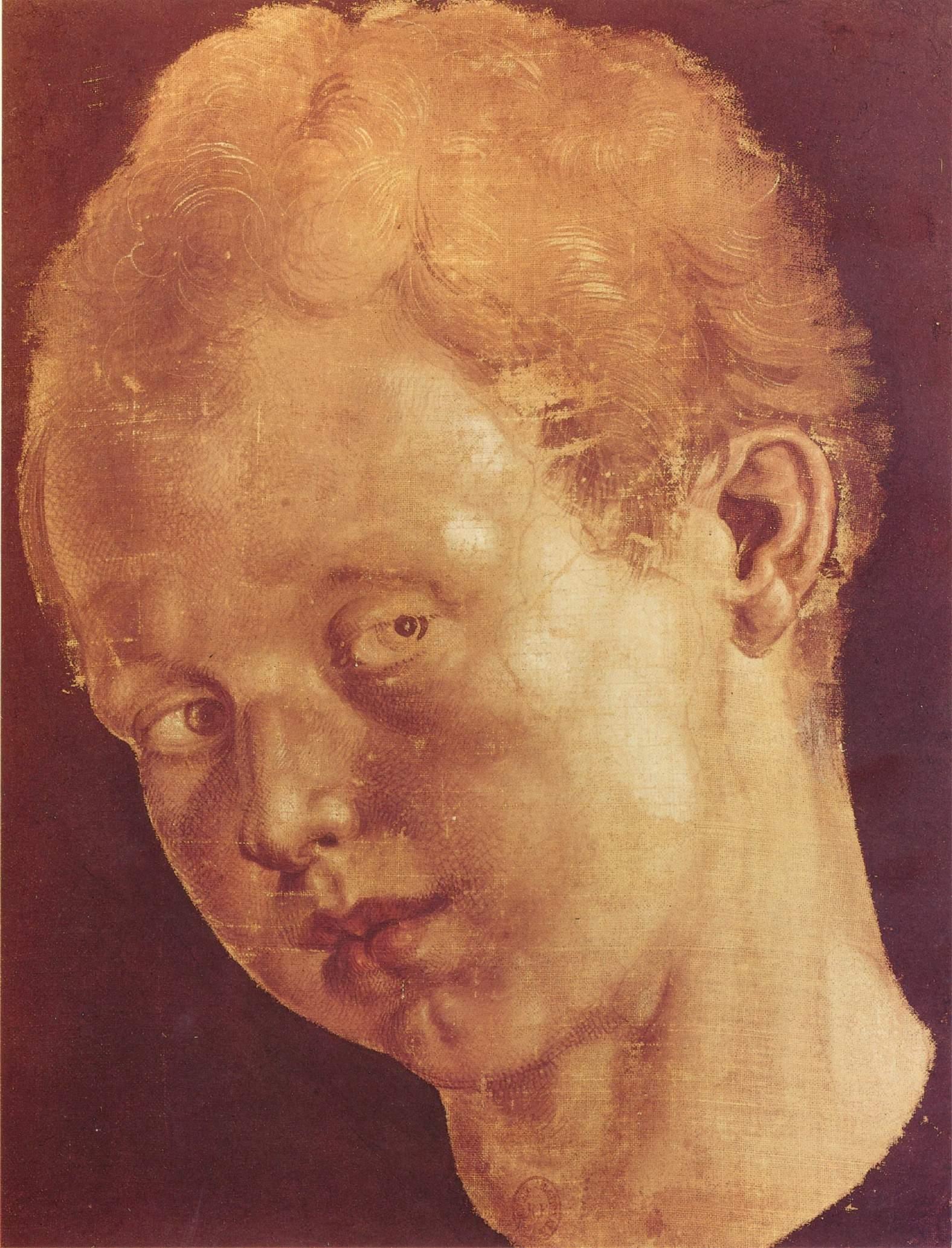 Детская голова, наклоненная влево, Альбрехт Дюрер