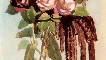 Розы и сережки