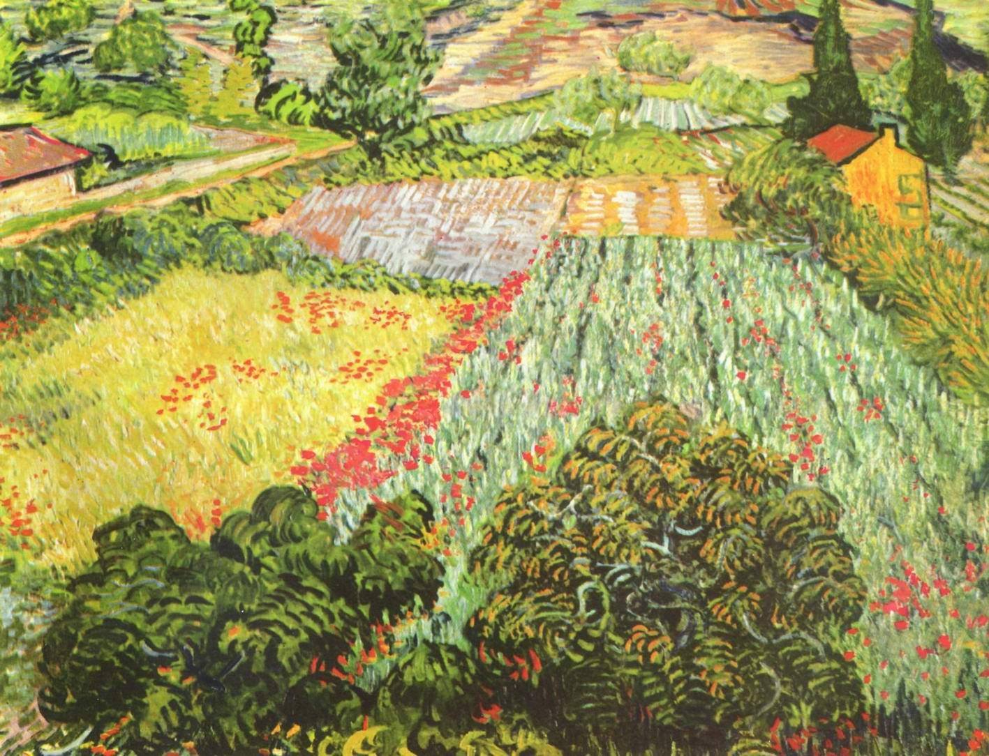 Поле цветущего мака, Ван Гог Винсент Виллем