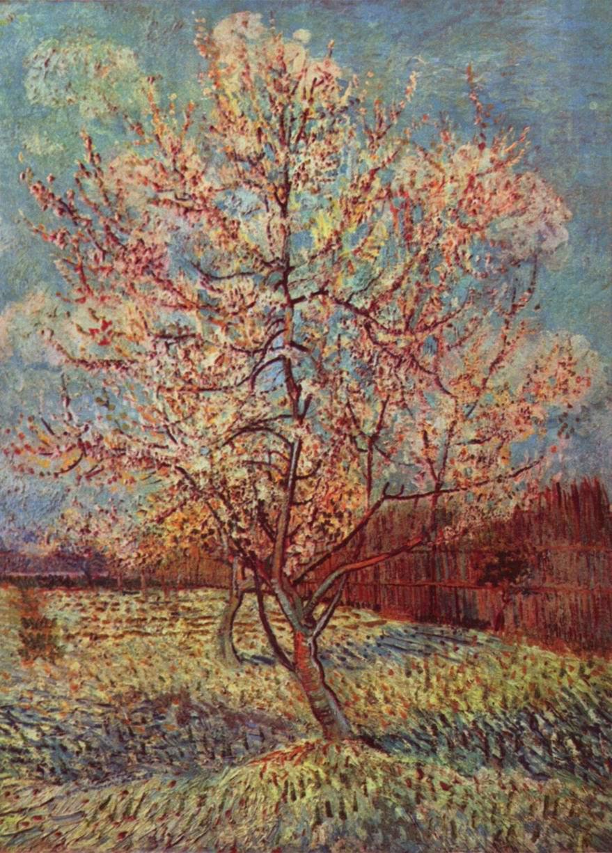 Персиковое дерево в цвету, Ван Гог Винсент Виллем