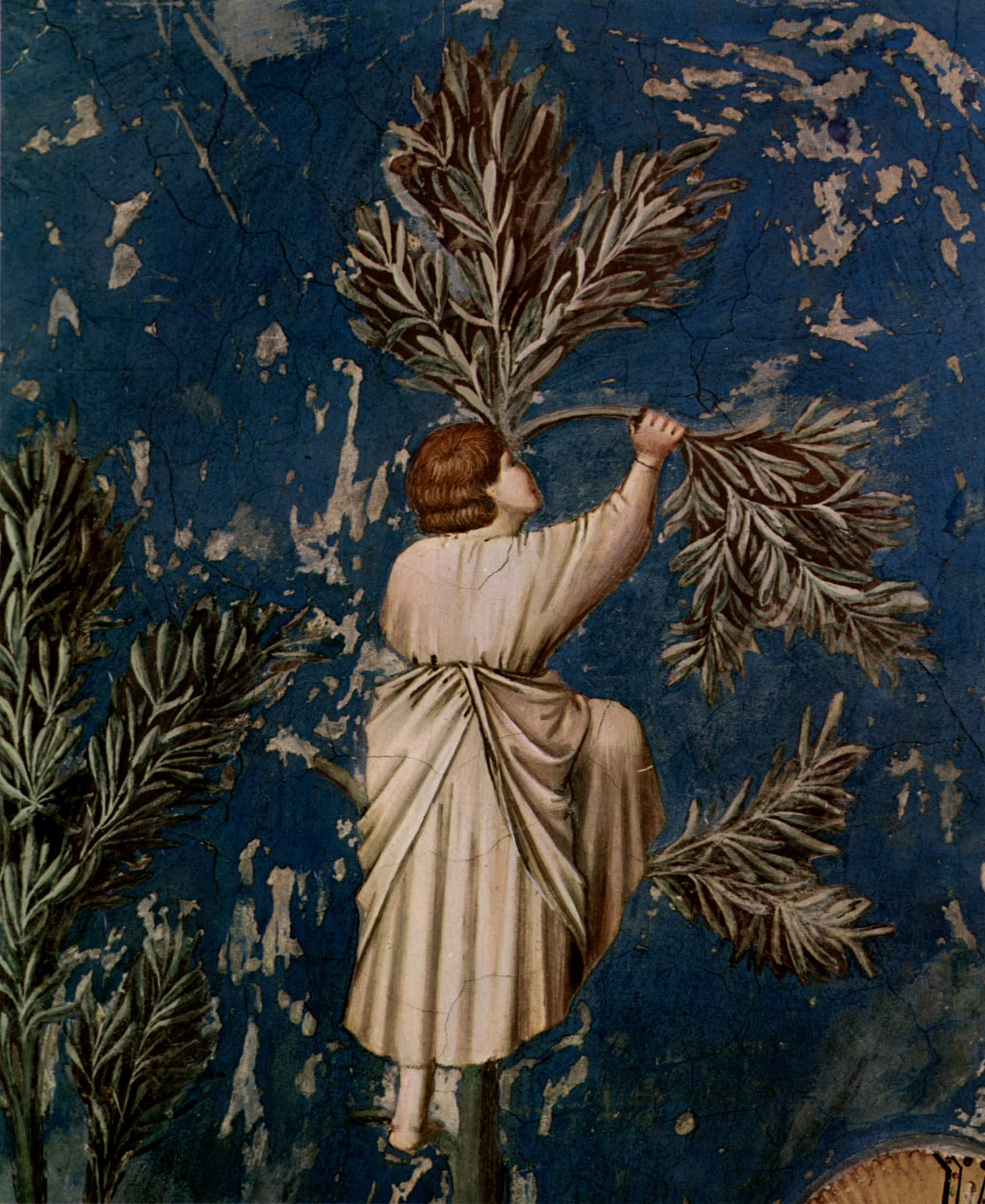 Цикл фресок капеллы Арена [28] в Падуе (капелла Скровеньи). Оплакивание Христа. Фрагмент. Скорбящий, Джотто ди Бондоне