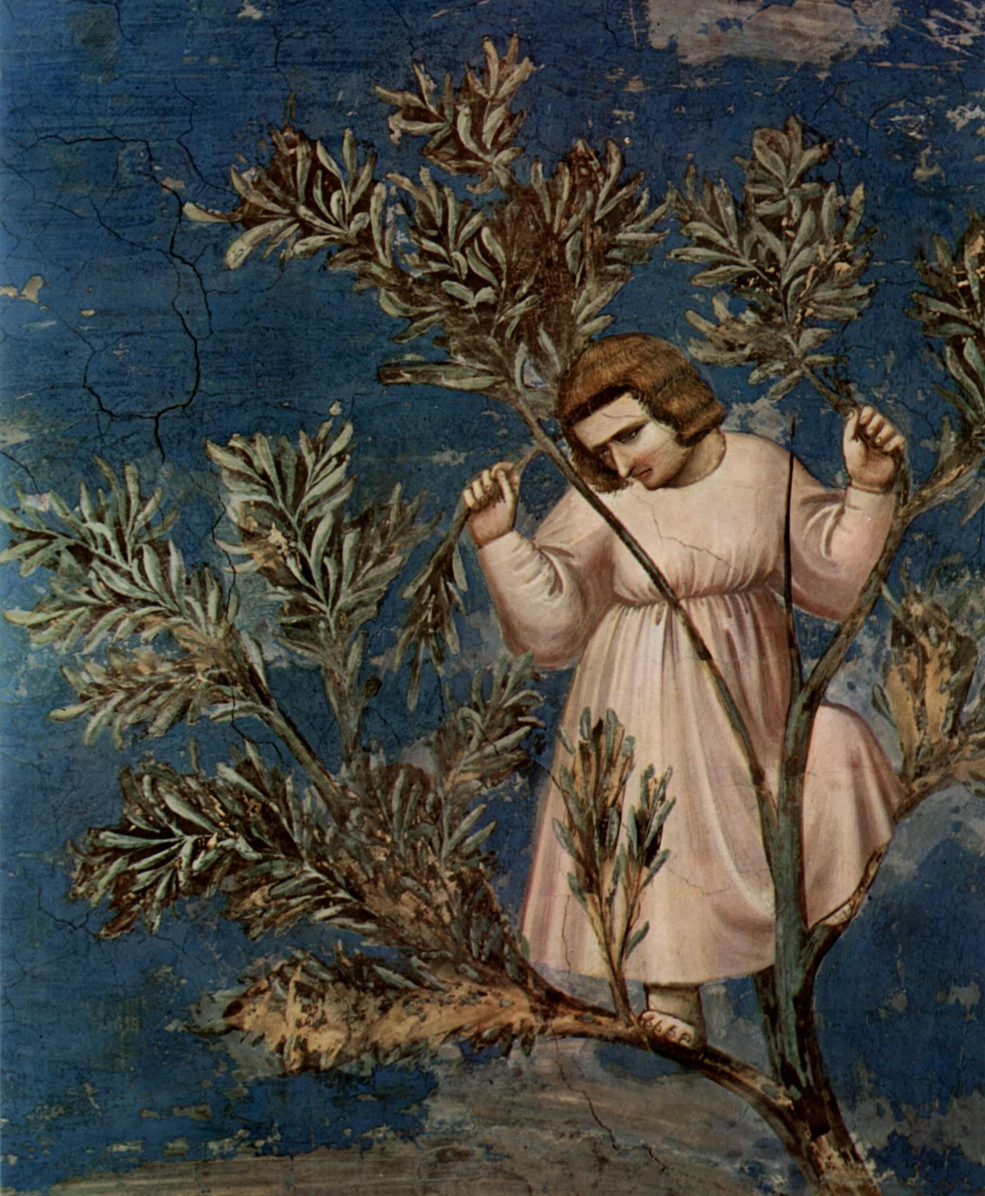 Цикл фресок капеллы Арена [29] в Падуе (капелла Скровеньи). Въезд в Иерусалим. Фрагмент, Джотто ди Бондоне