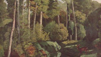 Лесной ручей с косулями