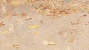 Осенние листья. Этюд для картины «Осенний день. Сокольники»