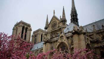 Нотр-Дам де Пари: история и значимость собора, последствия пожара и перспективы